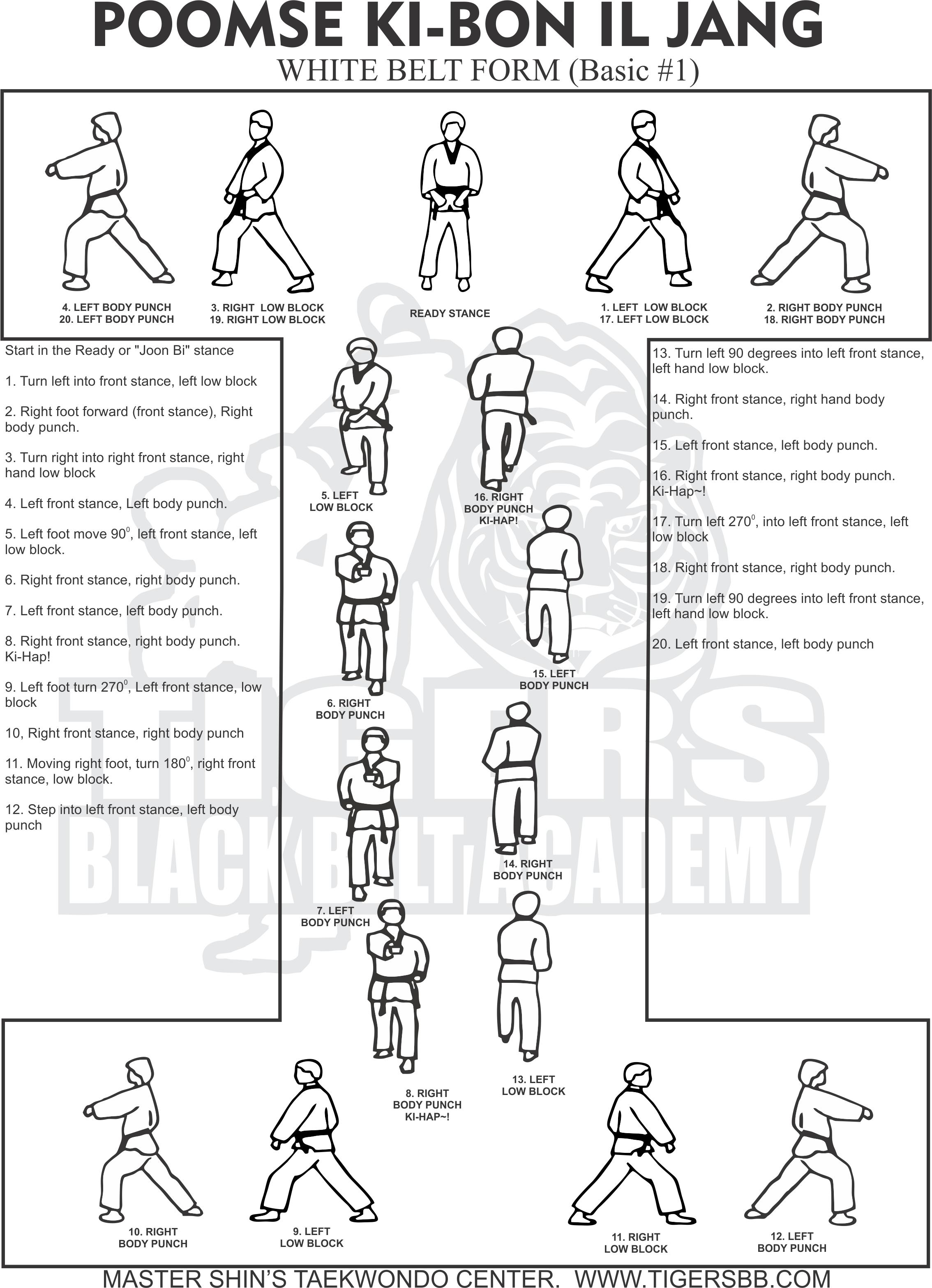 taekwondo white belt form step by step 30 000 belt tensioner